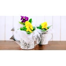 Lillepoe pakkumised kevadel