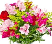 Roosa lillekimp kingitusega